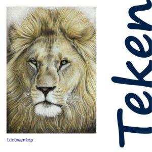 Leeuwenkop tekenpakket